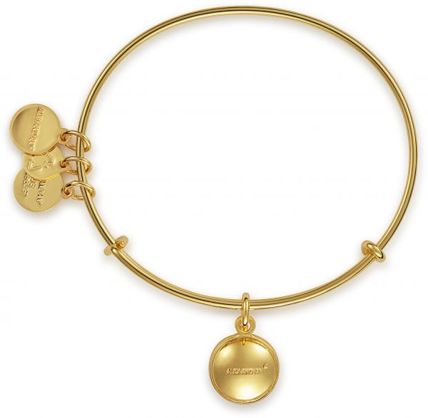 Alex and Ani Bangle Bar August Birth Month Gold-Tone Expandable Bracelet